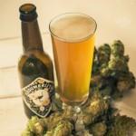 Hops & Beer